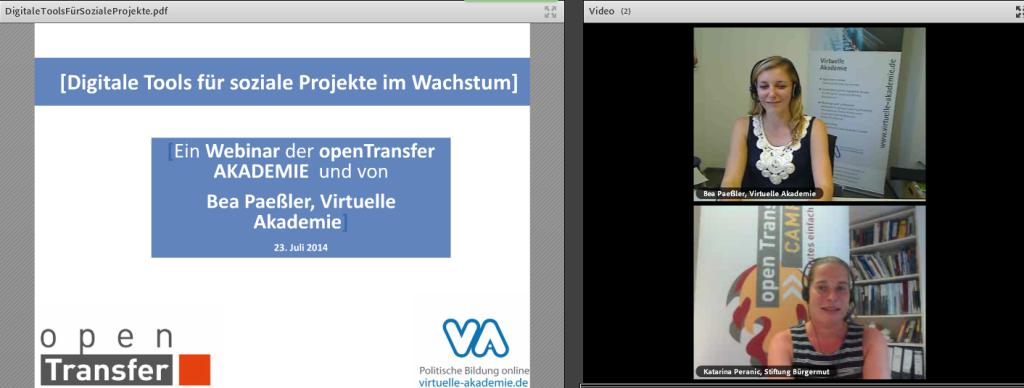 """Screenshot vom Webinar """"Digitale Tools für soziale Projekte im Wachstum"""" mit Bea Paeßler"""